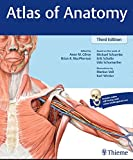 img - for Atlas of Anatomy book / textbook / text book