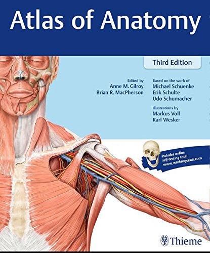 New used books for anatomy atlas of anatomy 3rd 2016 fandeluxe Gallery