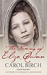 The Naming of Eliza Quinn