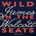Wild in the Seats | James Wolcott