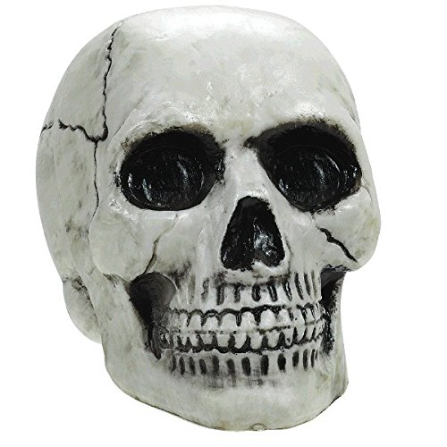 Amscan Haunted Mansion Halloween Party Creepy Skull Decoration, White, 4 1/8