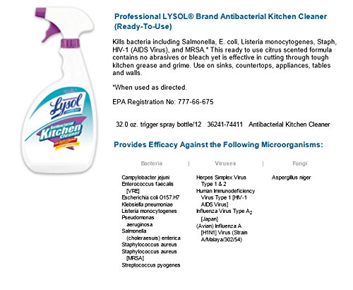 Lysol Bleach Free Toilet Bowl Cleaner 48 Oz