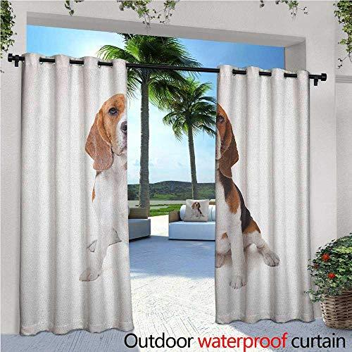 familytaste Beagle Indoor/Outdoor Single Panel Print Window Curtain Beagle Dog Posing Loving Puppy Furry Friend Companion Domestic Animal Silver Grommet Top Drape W84 x L96 Cinnamon Black White