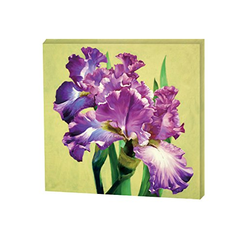 Inner Framed Vintage Canvas Print Wall Art Floral Oil Painting for Home decor Purple Iris Canvas Art 12X12 inch Square with a Distressed White Finish Ready to Hang