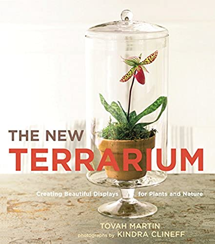 The New Terrarium Creating Beautiful Displays For Plants And Nature
