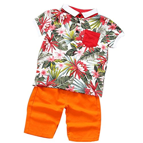 Vibola Summer Children Baby Boys Flower Polo shirt+Pants Outfits Clothes