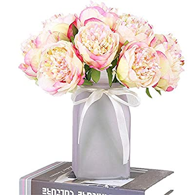 Greentime 2 Pack Artificial Peony Bouquets Total 10 Heads Silk Fake Flowers Living Room Home Bridal Wedding Party Festival Bar Table Decor (Champagne) - Quantity: Each package has 2 bouquets. Each bouquet has 5 silk peony flowers. The vase is NOT included! Size: Each artificial bouquet is approximately 11.81in / 30cm long, flower head diameter is approximately 3.94in / 10cm. Due to manual measurements, please allow an error of 1-2 cm. Material: The artificial peony is made of high quality silk, and its stem is made of plastic wrapped iron wire. You can twist to any shape you want. It is perfect for adding a focal point to your room. - living-room-decor, living-room, home-decor - 51x20mZbRQL. SS400  -
