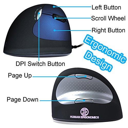 Buy wireless mouse bluetooth ergo