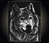 "Lithograph print ""Wolf"" A pen and ink on scratchboard drawing of a gray wolf"