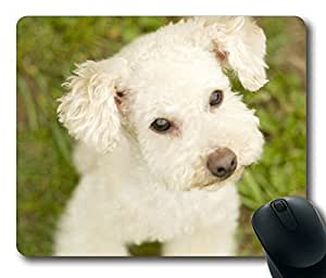 Cute Dog Masterpiece Limited Design Oblong Mouse Pad by Cases & Mousepads