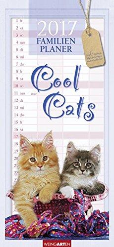 Familienplaner Cool Cats - Kalender 2017