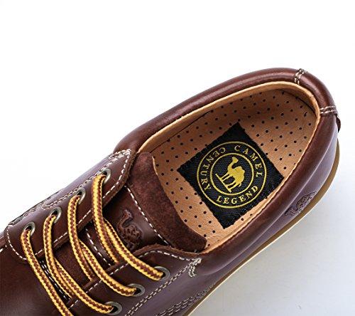 Hombres Zapatos bajo de de Cuero Zapatos Oxford de Ocasionales de de Café Seguridad para Crown No Trabajo Botas Corte Camel con de Vestir Cordones xw0aFqcS