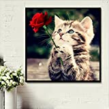 Faraway 5d diy Diamond Painting by Number Kit Flower Cat Rose Cat animal Diamond Mosaic Home Decor 30x30cm