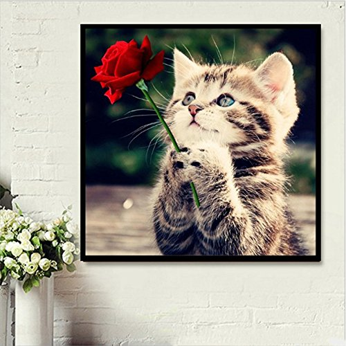 Faraway 5d diy Diamond Painting by Number Kit Flower Cat Rose Cat animal Diamond Mosaic Home Decor 30x30cm