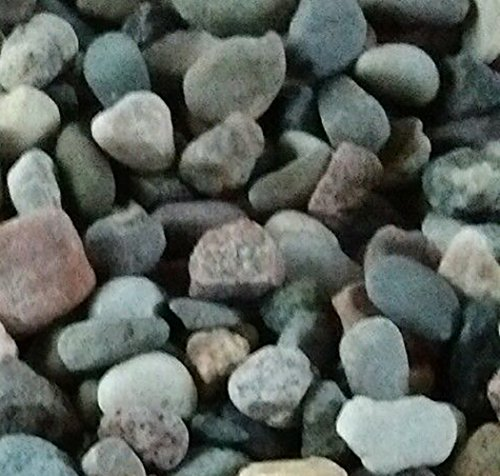 Safe & Non-Toxic {Standard Size, 0.63'' Inch} 15 Pound Bag of Gravel, Rocks & Pebbles Decor for Freshwater Aquarium w/ River Inspired Smooth Natural Earthy Toned Style [Tan, Gray & Blue] by mySimple Products