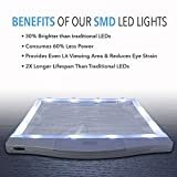 MagniPros 3X Large Ultra Bright LED Page
