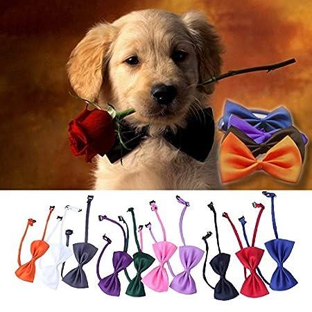 Rosba (TM) 10 PC / set Nueva lindo encantador hv5n collar de perro ...