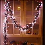 JPOQW(TM) Indoor Outdoor 400 LED Lights for Home, Lawn, Garden, Party, Wedding, Shop Window (B)