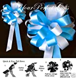 10 TURQUOISE BLUE WHITE WEDDING 8'' PEW BOW BRIDAL CAKE
