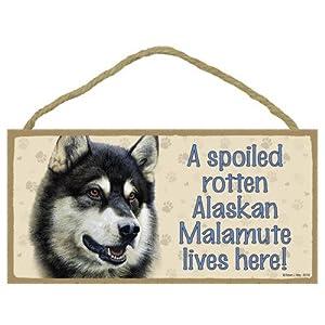 "SJT ENTERPRISES, INC. A Spoiled Rotten Alaskan Malamute Lives here Wood Sign Plaque 5"" x 10"" (SJT60702) 9"