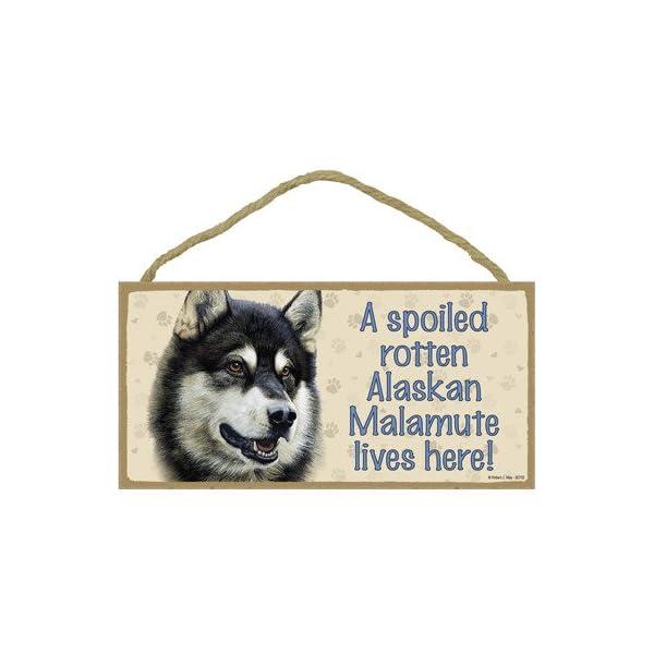 "SJT ENTERPRISES, INC. A Spoiled Rotten Alaskan Malamute Lives here Wood Sign Plaque 5"" x 10"" (SJT60702) 1"