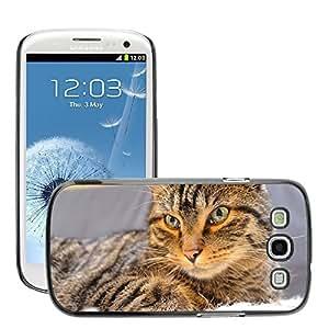 GoGoMobile Slim Protector Hard Shell Cover Case // M00117872 Cat Hangover Mackerel Concerns // Samsung Galaxy S3 S III SIII i9300