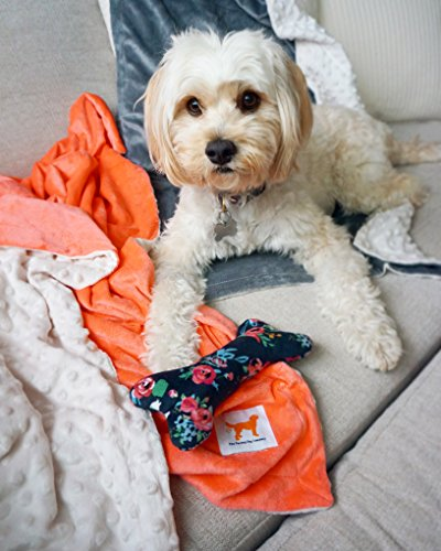 The Farting Dog Company Luxurious Pet Blanket/Throw for Dog Cat Animal, Small and Medium Sized Pets (28x40in), 100% Polyester Minky, Reversible, Two Color Options Gray and Coral, Bonus Plush Bone Toy