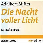 Die Nacht voller Licht | Adalbert Stifter