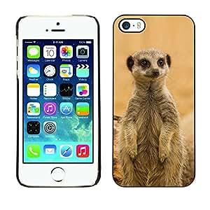 Be Good Phone Accessory // Dura Cáscara cubierta Protectora Caso Carcasa Funda de Protección para Apple Iphone 5 / 5S // Cute Meercat