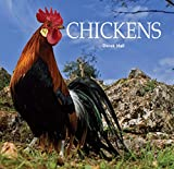 img - for Chickens book / textbook / text book