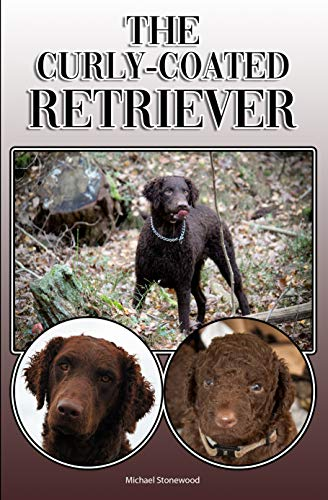 The Curly-Coated Retriever: A Complete and Comprehensive Owners Guide to: Buying, Owning, Health, Grooming, Training, Obedience, Understanding and Caring for Your Curly-Coated Retriever ()