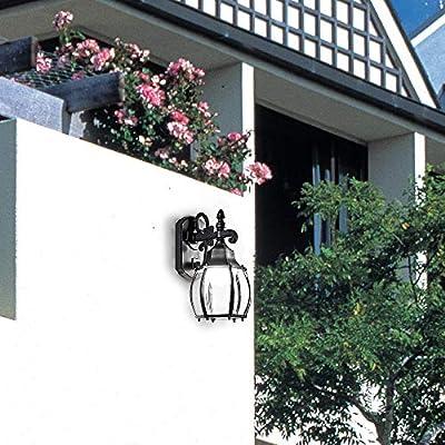LANFU Wall Lantern, Wall Sconce as Porch Light, 1100 Lumen, Aluminum Housing Plus Glass, Matte Finish, Outdoor Rated
