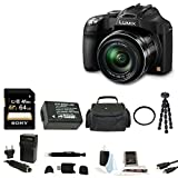Panasonic Lumix DMC-FZ70 FZ70 FZ70K 16.1MP Digital Camera (Black) w/ 60x Optical Zoom and Full HD Video + Sony 64GB SDXC + (2) Wasabi DMW-BMB9 Battery + Battery Charger + UV Filter + Focus Mini HDMI Cable + Accessory Kit