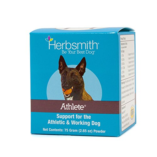 Herbsmith Athlete – Canine Endurance Supplement for Working and Agility Dogs – For the Canine Athlete – 75g Powder