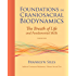 Foundations in Craniosacral Biodynamics, Volume One: The Breath of Life and Fundamental Skills: 1