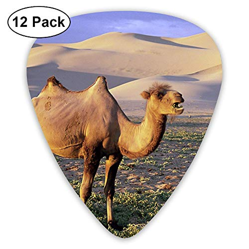 Classic Guitar Pick (12 Pack) Desert Mountain Camel Player's Pack for Electric Guitar,Acoustic Guitar,Mandolin,Guitar Bass -