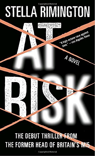 At Risk  A Novel