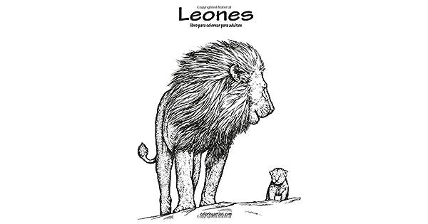 Leones Libro Para Colorear Para Adultos 1: Nick Snels: Amazon.com.mx ...