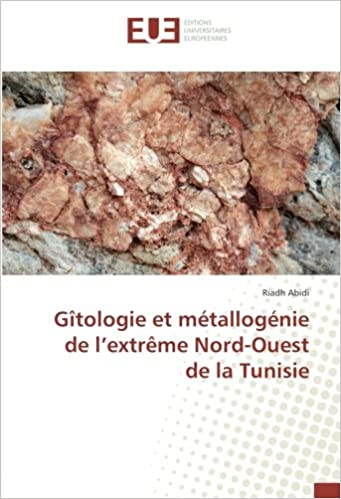 Paginas Descargar Libros Gîtologie Et Metallogenie De L'extreme Nord-ouest De La Tunisie PDF Gratis Descarga