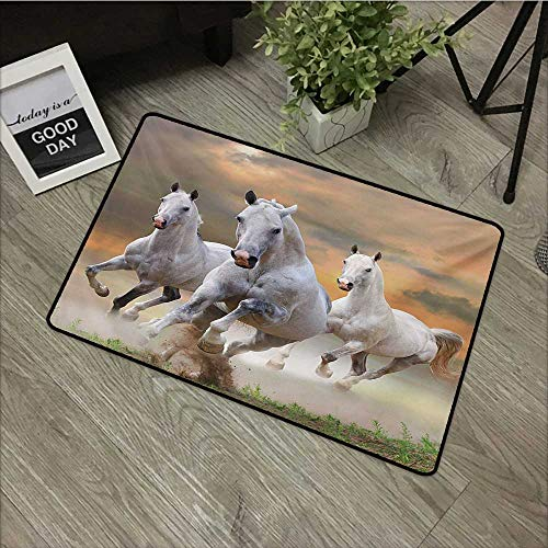 Moses Whitehead Office Door Mat Horses,Stallion Horses Running on a Mystic Sky Background Equestrian Male Champions Print,White Orange,for Kitchen Dining Living Hallway Bathroom 35