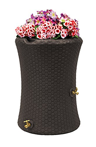 (Good Ideas IMP-N50-DBR Impressions Nantucket Rain Saver Rain Barrel, 50 Gallon, Dark Brown)