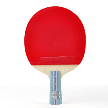 Dhs Table Tennis Racket Review Brokeasshome Com