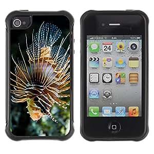 ZETECH CASES / Apple Iphone 4 / 4S / MAJESTIC CORAL FISH / Majestuoso Coral Peces / Robusto Caso Carcaso Billetera Shell Armor Funda Case Cover Slim Armor