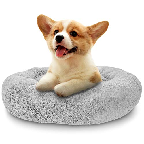 SHU UFANRO Dog Beds for Small Dogs