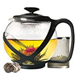 Primula PTA-2340 Tempo Glass Teapot with 2 Flowering Teas, 40 oz, Black, 40 Ounces,