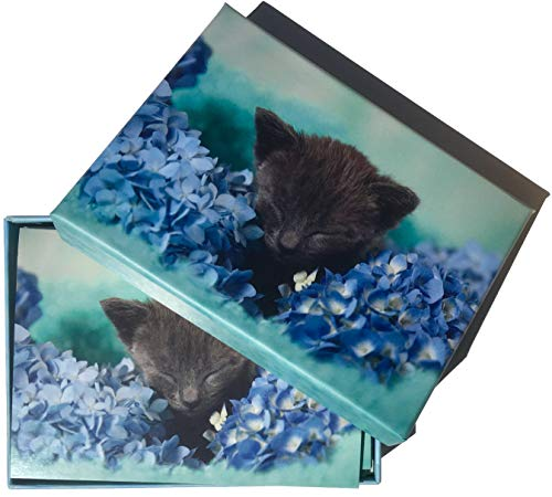 Crown Point Graphics Hydrangea Black Kitten Note Cards Decorated Inside, Keepsake Box Set of 15
