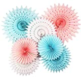 He or She Gender Reveal Party Supplies Pink Blue Tissue Paper Fans/ Tissue Paper Pom Pom Flower Pink Blue Boy or Girl Baby Sex Reveal Party Decor