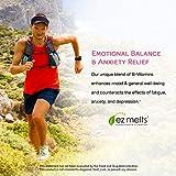 EZ Melts Energy Memory & Mood Enhancer, Methylated