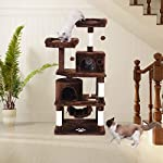 BEWISHOME Cat Tree Condo Furniture Kitten Activity Tower Pet Kitty Play House with Scratching Posts Perches Hammock MMJ01 11