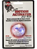 Spotbrights Led Motion Activated Cat Ball, My Pet Supplies